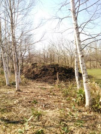 林道の先に見える小さな丘