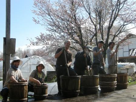 バイオダイナミック調剤撒き2013春_02